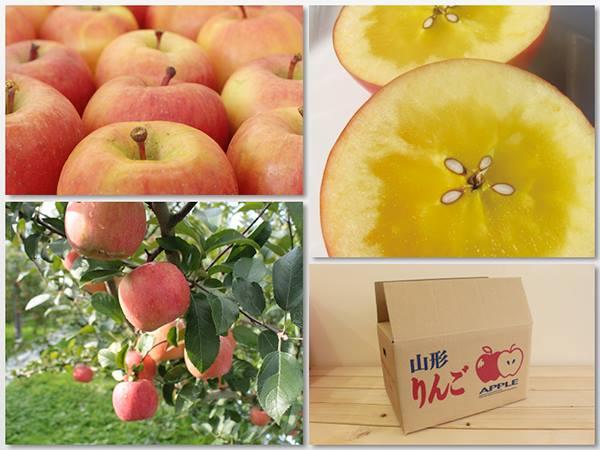 山形県産幻の蜜りんご高徳